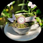 teatimemini