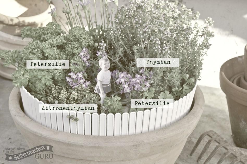 Minigarten3