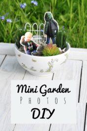 Ein Minigarten Tutorial