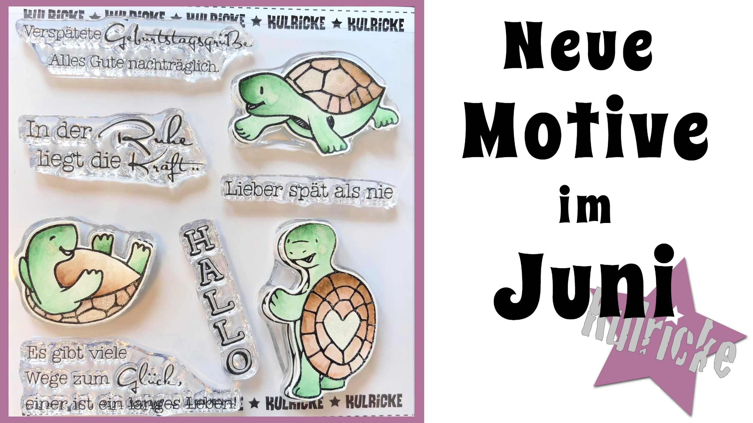 Schildkröte Huno
